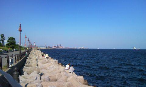 公園 釣り 大黒 海